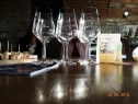literarno-vinski-vecer-vinoteka-svetinjska-klet-12_kud-prasila
